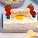 バースデーケーキ BIRTHDAY CAKE ¥1,400