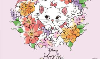 "ITS'DEMO(イッツデモ) COSME WEEK""Marie"""