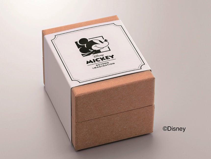 REGUNO レグノ ソーラーテック シンプルシリーズ Disneyコレクション ボックス