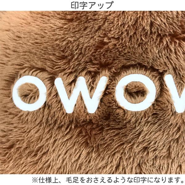 サンエックスネットショップ「チャイロイコグマ名入れぬいぐるみ(M)&(L)」 名入れアップ