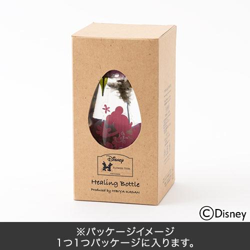 日比谷花壇 ヒーリングボトル ボックス