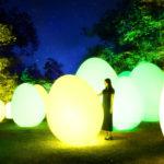 森と湖の光の祭