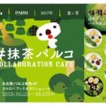 森永乳業「#抹茶パルコ」アイキャッチ