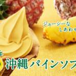 沖縄パインソフト