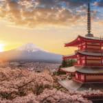 春暁の富士山と桜(山梨)