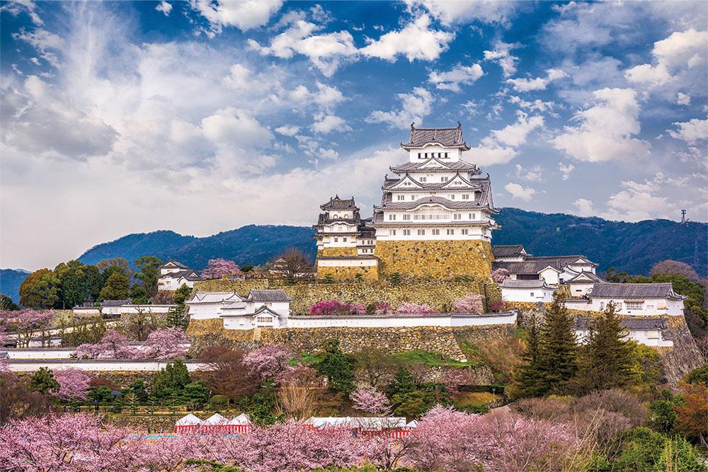 桜咲く姫路城(兵庫)