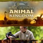 キーアート『Magic of Disney's Animal Kingdom ディズニー・アニマルキングダムの魔法』