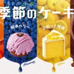 コメダ「季節のケーキ」1