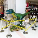 シュライヒ ティラノサウルスディスプレイ