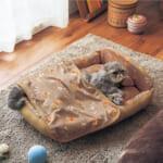 ブランケット付きペットベッド 使用イメージ
