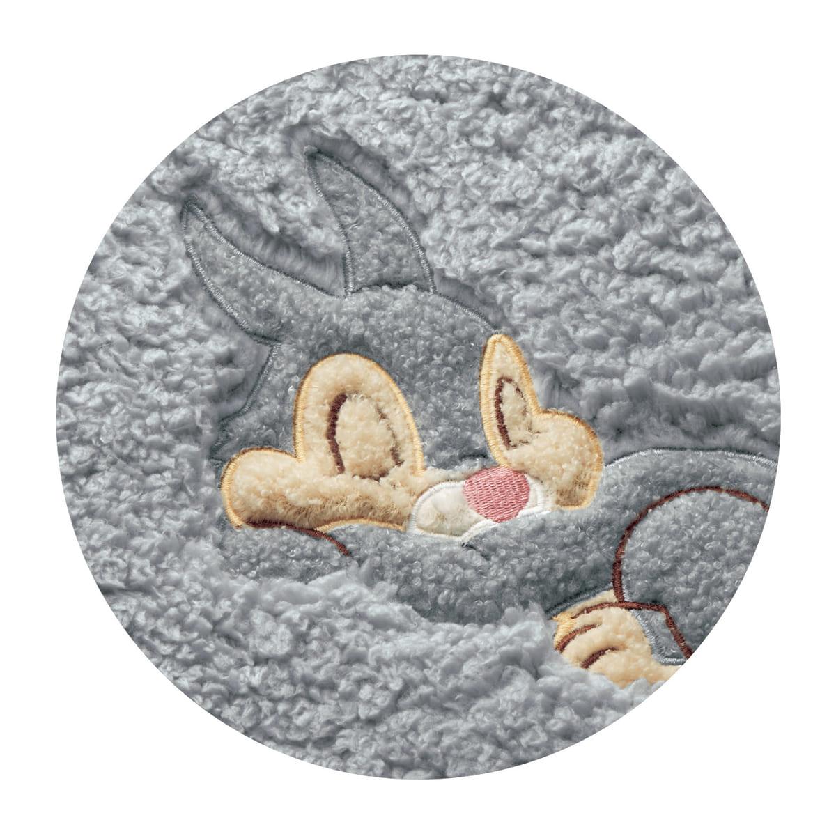 アップリケ付きもふもふ毛布 とんすけ デザインアップ