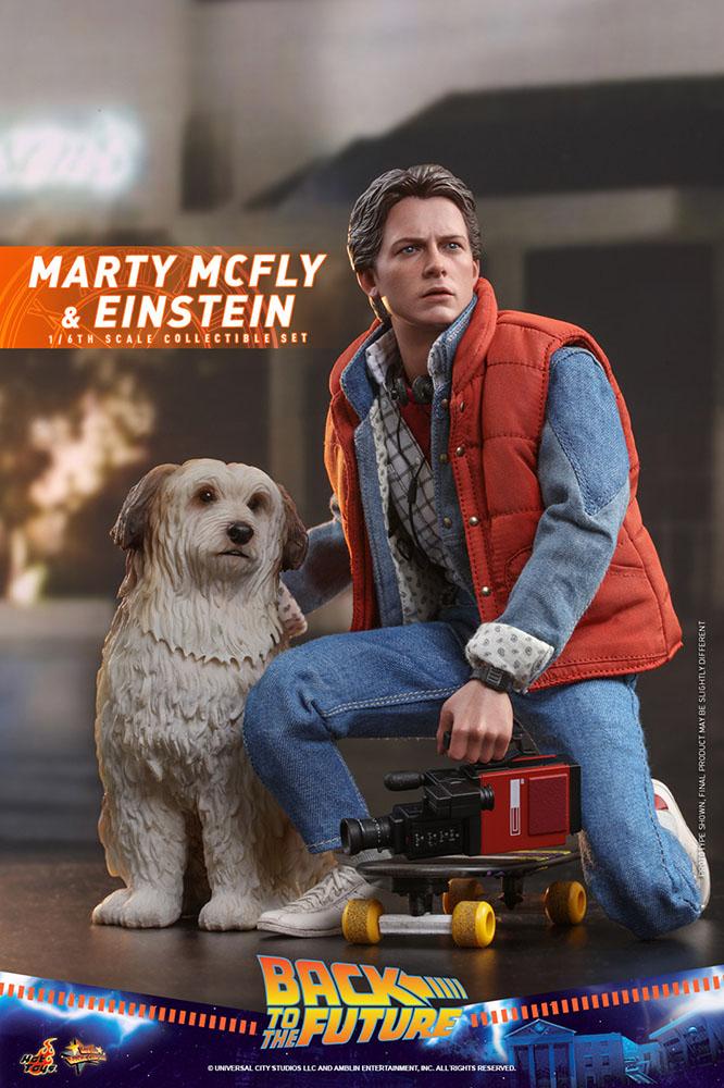 マーティ アインシュタイン しゃがみ