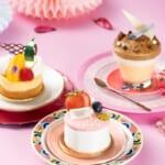 マンゴーマッコリチーズケーキ/トゥンカロン/ダルゴナコーヒーティラミス